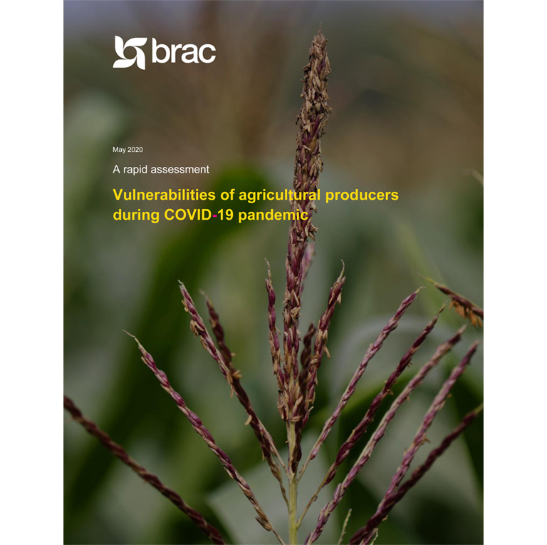 Report-A-rapid-assessment-Vulnerabilities-of-agricultural-producers-during-COVID-19-pandemic-1